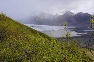 Wanderung in Skaftafell