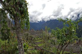Machu-Picchu92